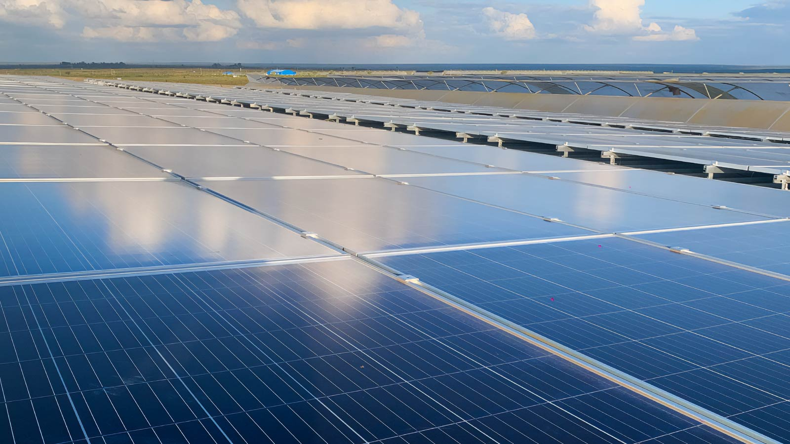 How to invest in solar energy: a conversation with ecoligo
