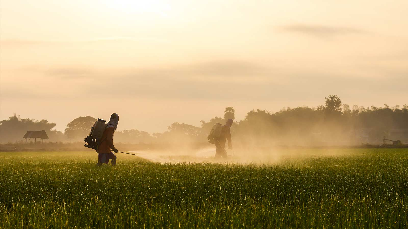 The Links Between Industrial Agriculture & Environmental Racism