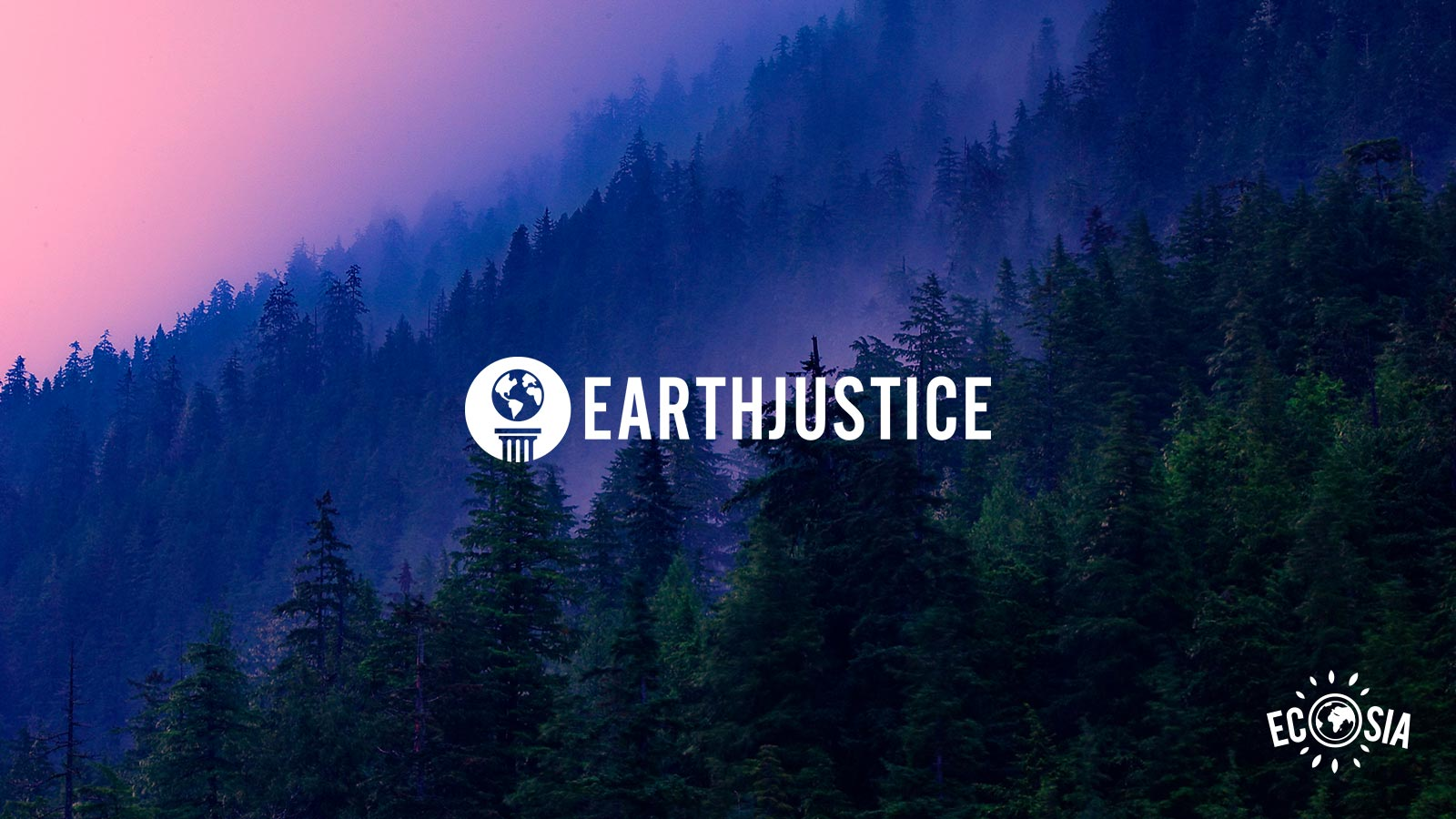 Your voice on climate counts: revenue from all US searches goes towards Earthjustice until polls close