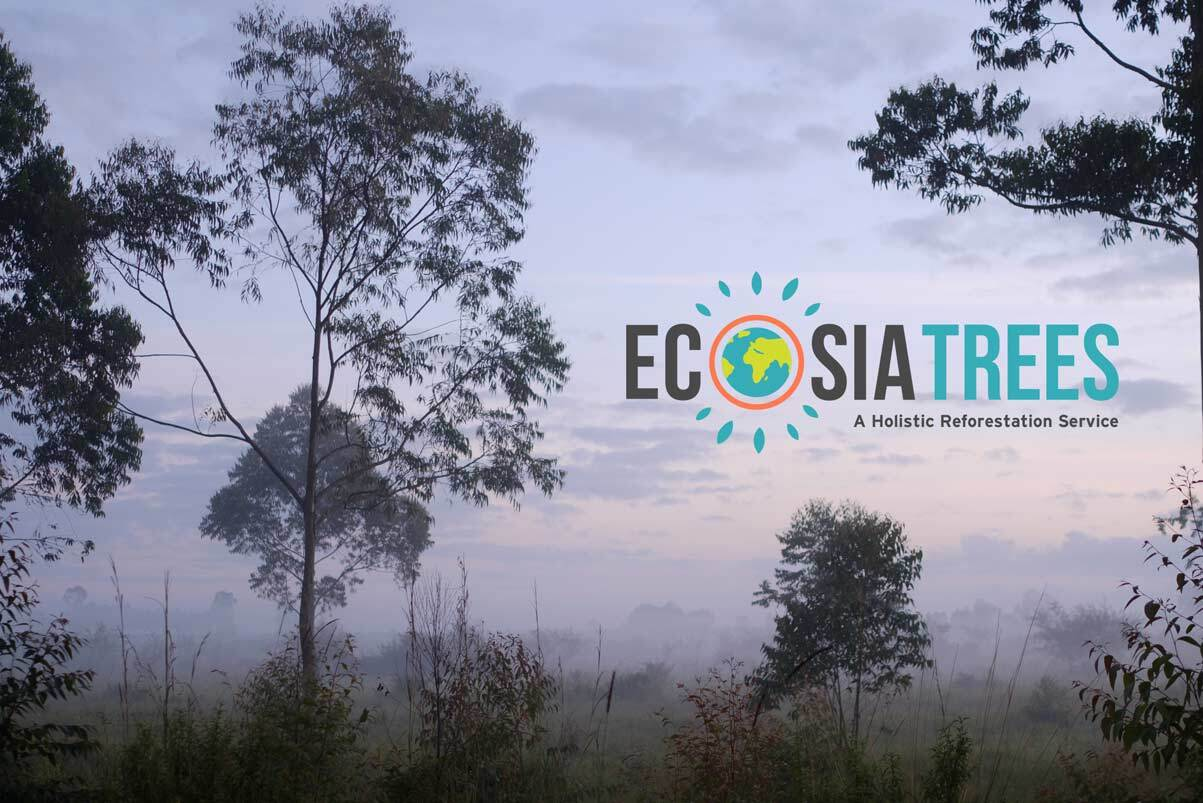 Our plan to plant more trees, faster: introducing Ecosia Trees